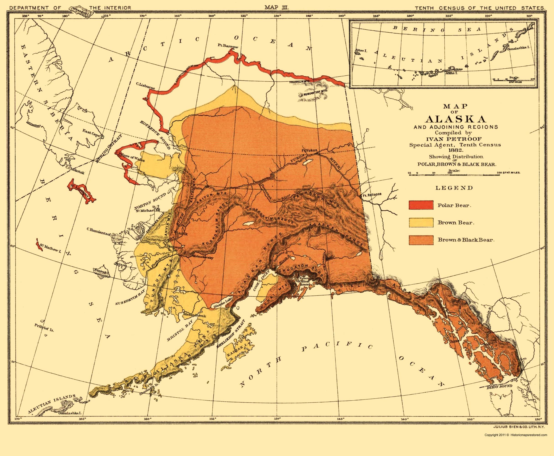 Picture of: Alaska Bear Habitat Bien 1882 23 X 27 92 Walmart Com Walmart Com