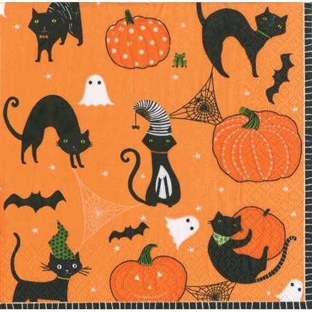 Halloween Party Cocktail Napkins 20ct Scaredy Cats Orange - Halloween Punch Cocktail