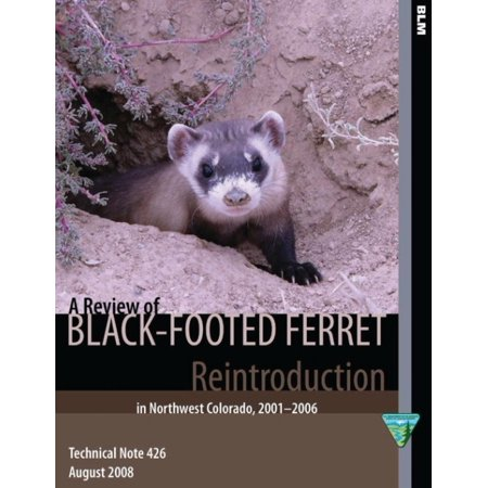 A Review of Black- Footed Ferret Reintroduction in Northwest Colorado,2001-2006