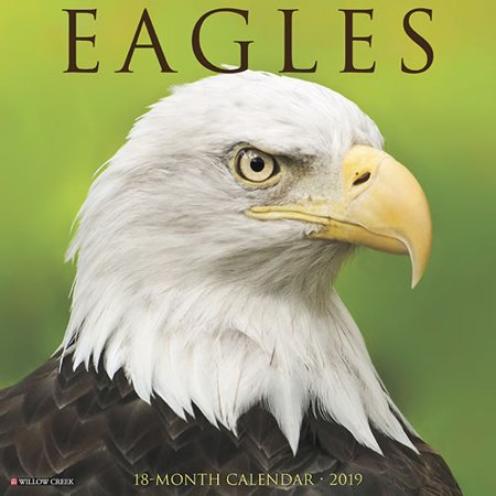 Willow Creek Press 2019 Eagles Wall Calendar