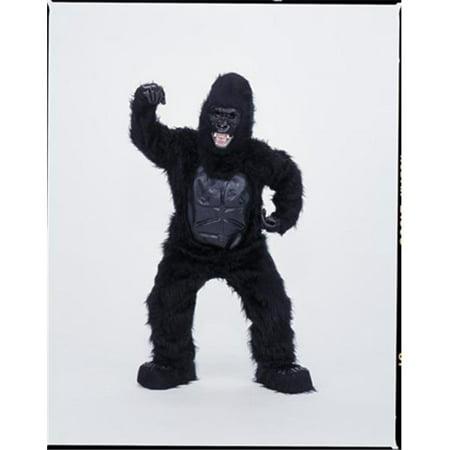 Godzilla Mascot Costume (Costumes For All Occasions CM69009 Gorilla Mascot)