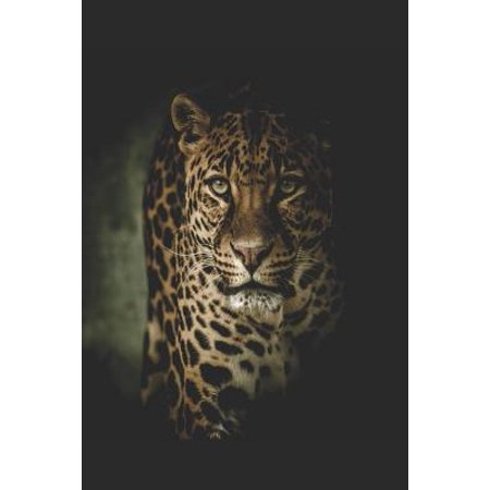 Leopard: The Empty Lined Notebook Journal Diary for Lovers of Leopards, Lions, Tigers and Other Big Cats Paperback ()