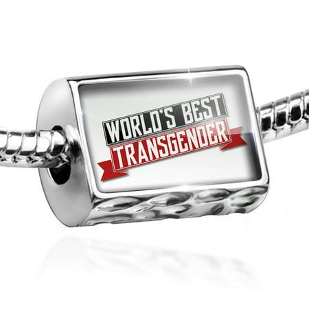Bead Worlds Best Transgender Charm Fits All European