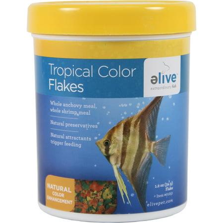 Elive Llc.-Tropical Color Granules 3.5 Ounce