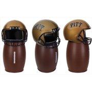 NCAA 81-CGRB27 University of Pittsburgh Collectors Bin