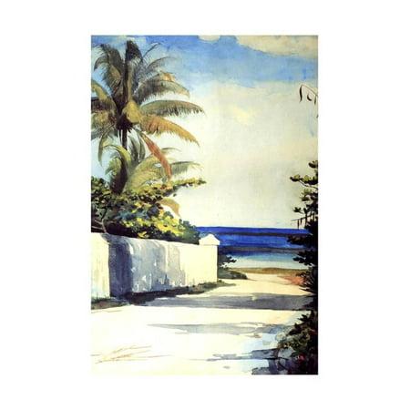 Road in Nassau, 1898-99 Coast Watercolor Landscape Ocean Painting Print Wall Art By Winslow Homer