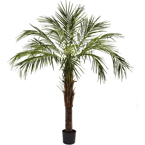 Nearly Natural 6' Robellini Palm Tree