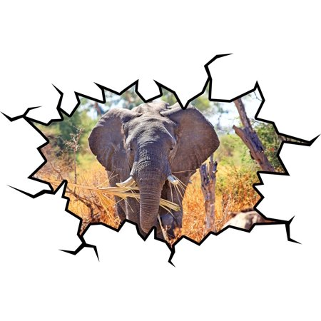 (VWAQ African Elephant Wall Decal Safari Elephant Wall Sticker Mural VWAQ-WC13 (18