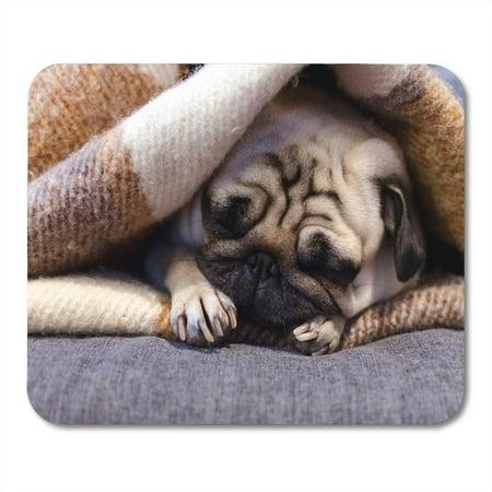 SIDONKU Beige Lazy Cute Small Dog Breed Pug Sleeping Sofa Mousepad Mouse Pad Mouse Mat 9x10