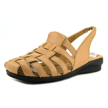 array santa cruz women round toe sandals