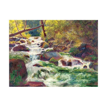 Mountain Stream Print Wall Art By Carol (Bailey Paper)