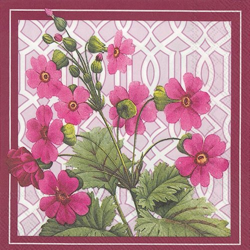4 PACKS PAPER COCKTAIL NAPKINS TRELLIS PRIMROSE 4 Packs Paper Cocktail Napkins Trellis Primrose by Generic