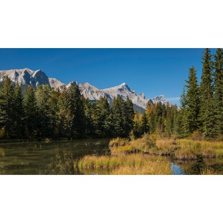 View of the Spring Creek Pond Mount Rundle Canmore Alberta Canada Poster (Creek Pond)