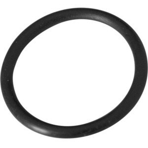 Summer Escapes Replacement O-Ring for F2000C Filter Pump Type C Retainer Nut P58045000K01 ()