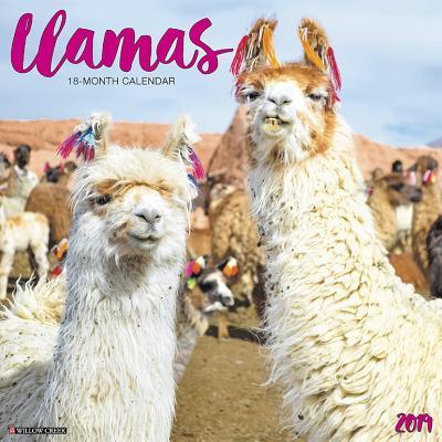 Llamas 2019 Calendar