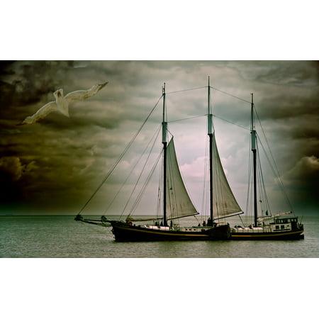 LAMINATED POSTER Boot Seagull Lake Ship Water Sailing Boat Sea Poster Print 24 x 36