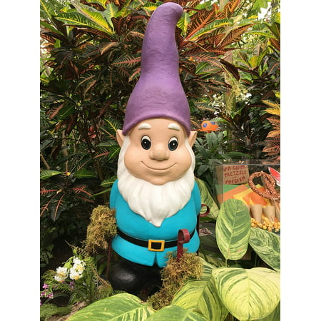 LAMINATED POSTER Dwarf Garden Grass Funny Beard Gnome Lawn Hat Poster Print 24 x - Gnome Beards