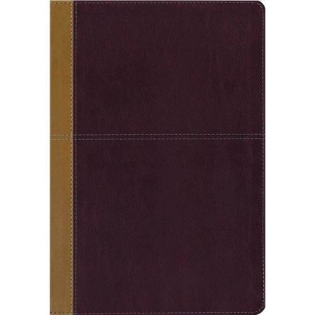Side By Side Bible  King James Version   Amplified  Camel   Rich Red  Italian Duo Tone
