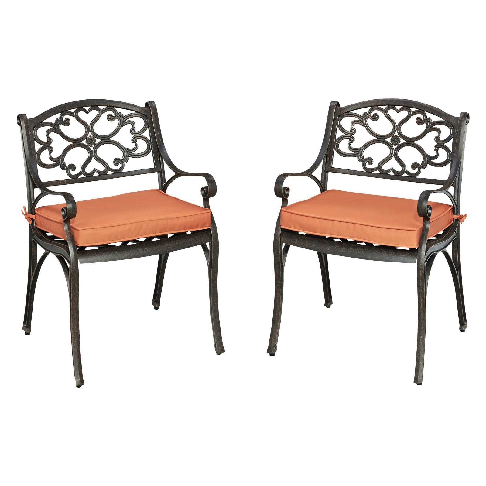 Biscayne Rust Bronze Pair of Arm Chairs with Cushions