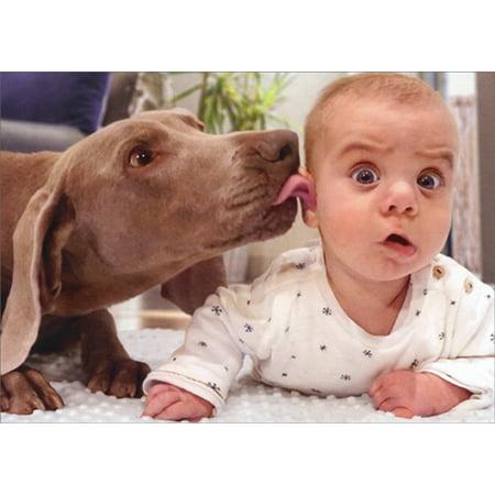 Avanti Press Dog Licks Baby's Ear Funny / Humorous Birthday - Dog Birthday Card