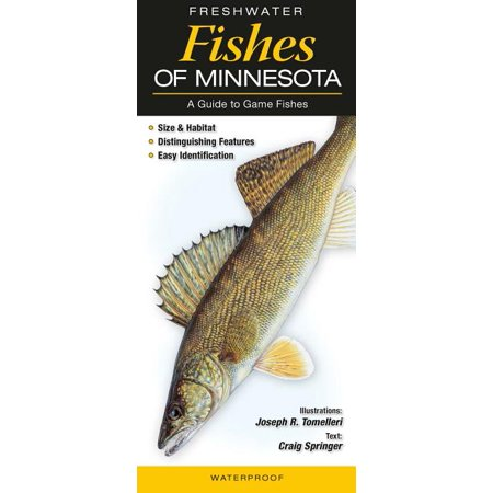 Freshwater Fishes of Minnesota : A Guide to Game Fish