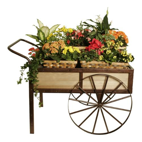 Weathered Pine Wheelbarrow Display Cart with Wheels and Metal Accents