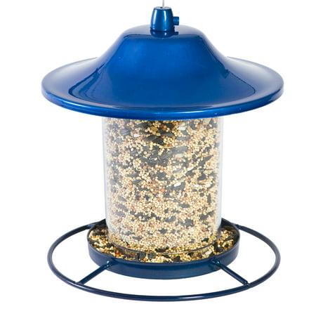 10 Lb Squirrel - Perky-Pet 2 lb Blue Sparkle Panorama Feeder