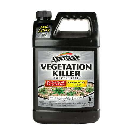 Spectracide Vegetation Killer Concentrate,