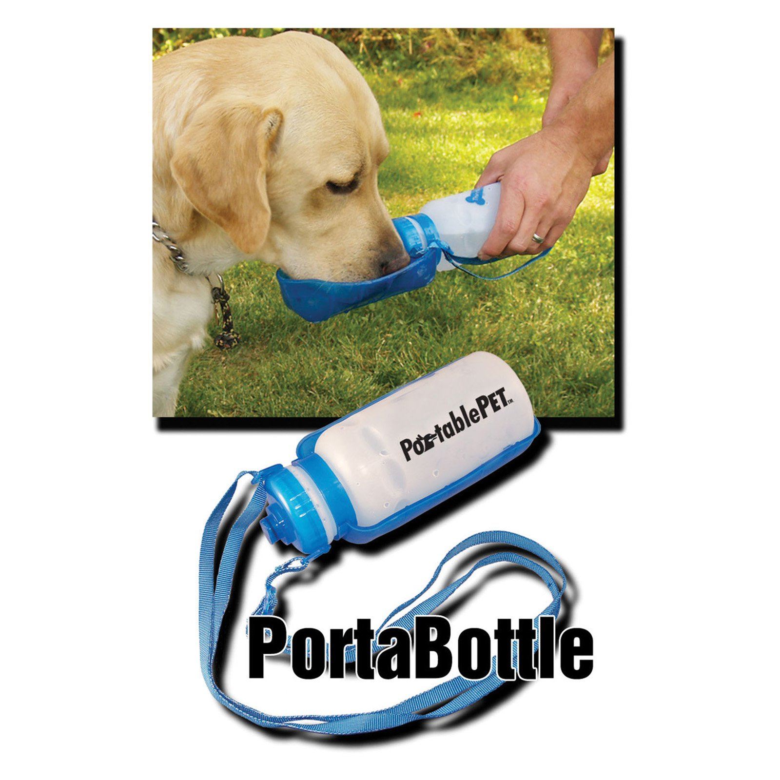 Heininger Holdings LLC PortablePet PortaBottle Travel Sport Bottle and Dish
