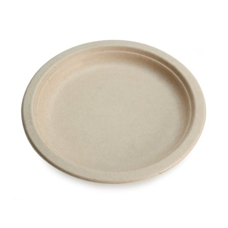 - Earth's Natural Alternative Unbleached Paper Dinner Plates, 10