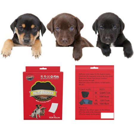 Weefy 10Pc Female Pet Dog Pants Heat In Season Menstrual Sanitary Nappy