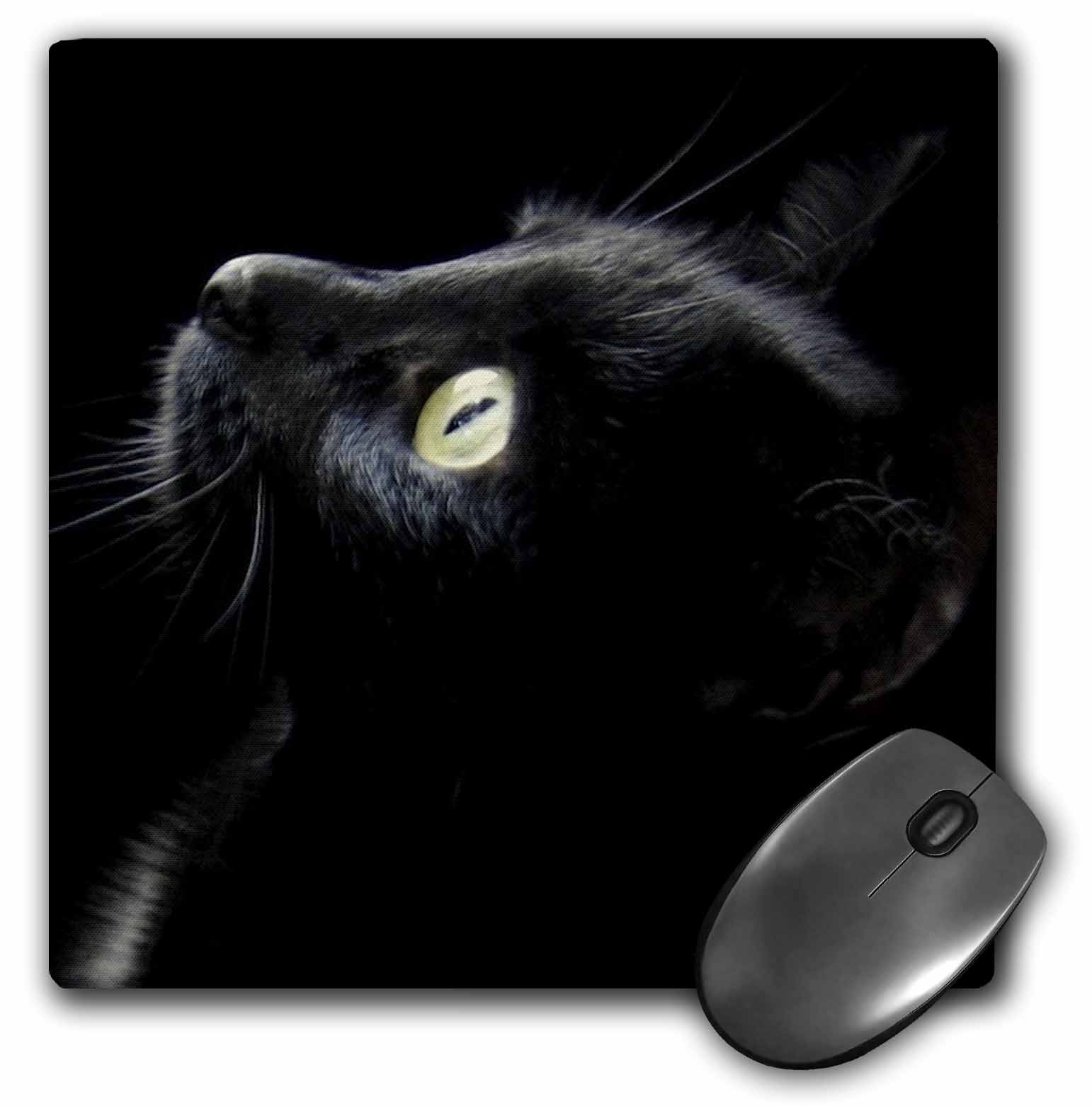 3dRose black cat face, Mouse Pad, 8 by 8 inches