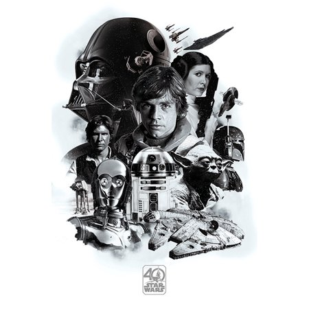 Star Wars: Episode IV - A New Hope - Movie Poster / Print (40th Anniversary Character Collage) (Size: 24