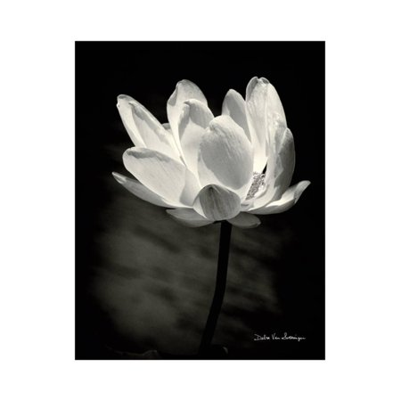 Lotus Flower X Print Wall Art By Debra Van Swearingen