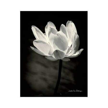 Lotus Flower X Print Wall Art By Debra Van Swearingen](Debra Schoch Halloween)