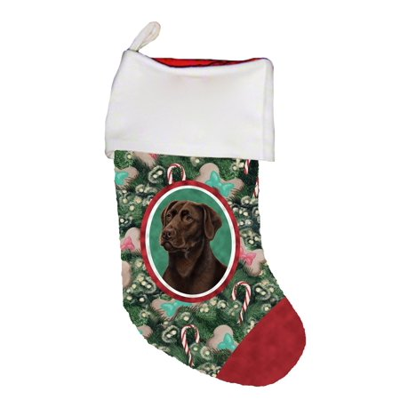 Best Stocking (Chocolate Labrador -  Best of Breed Dog Breed Christmas)