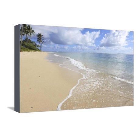 Kaaawa Beach, Windward Oahu, Hawaii Stretched Canvas Print Wall Art By Douglas (Windward Mall)