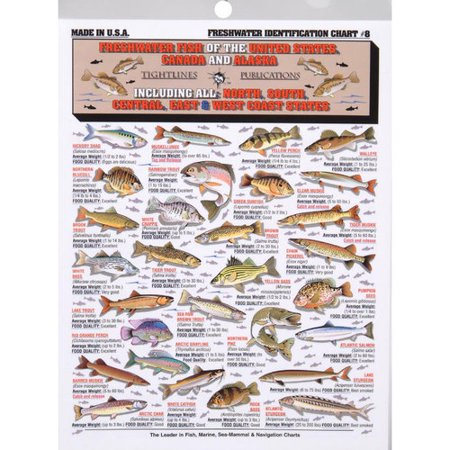Tightline publications freshwater identification chart for Types of fish at walmart