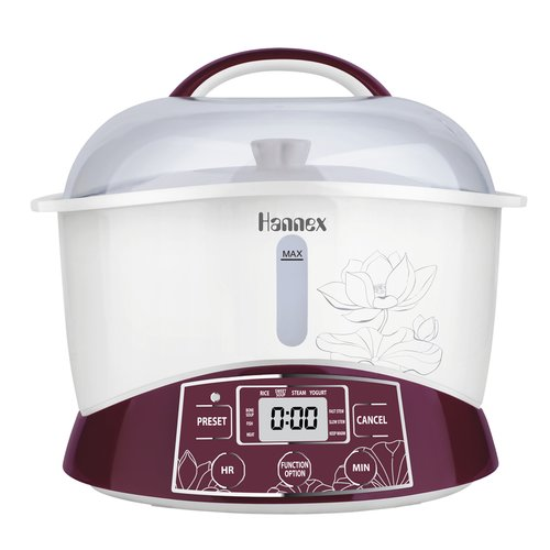 4D Hannex 2.3-Quart Electric Multi-Stew Cooker/Steamer Pot