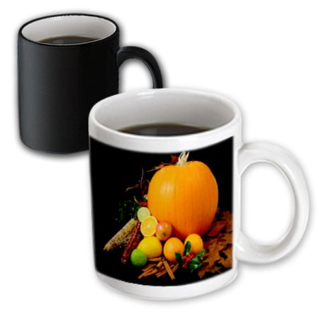3dRose Thanksgiving Celebration , Magic Transforming Mug, 11oz