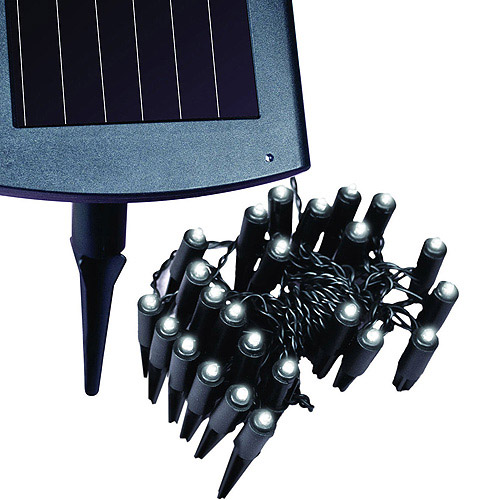 Maxsa Innovations Solar Plant/Border Light
