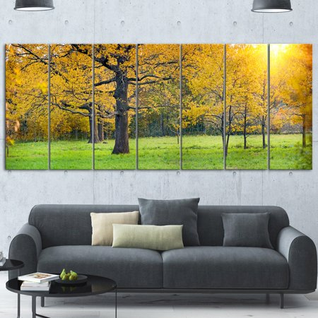 DESIGN ART Designart 'Sunny Park with Oak Panorama' Large Landscape Glossy Metal Wall Art