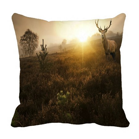 PHFZK Nature Pillow Case, Beautiful Foggy Misty Forest in Autumn Fall with Deer Stag Landscape Pillowcase Throw Pillow Cushion Cover Two Sides Size 18x18 inches