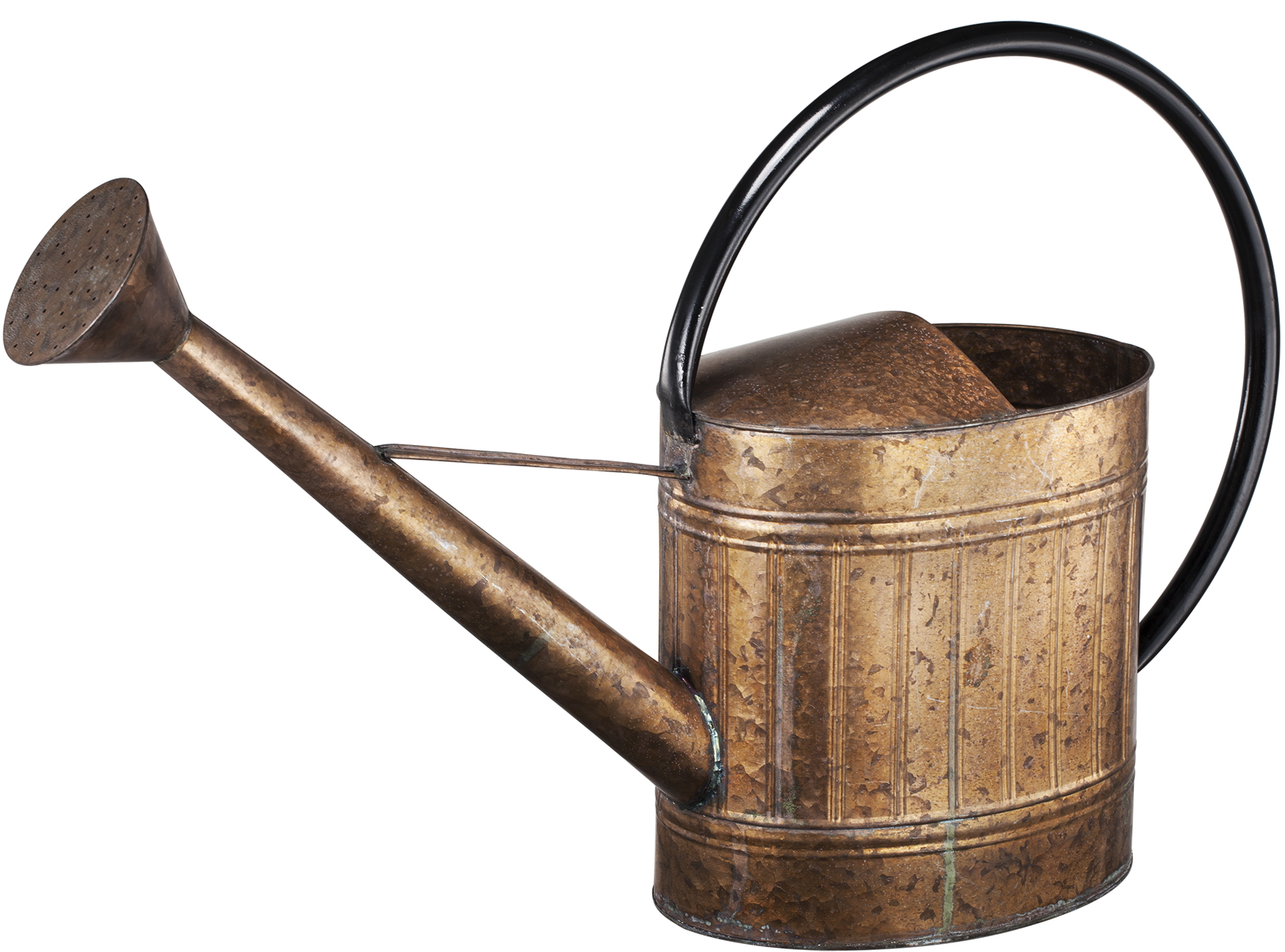 A&B Home French Chic Garden Metal Watering Can by A&B Home