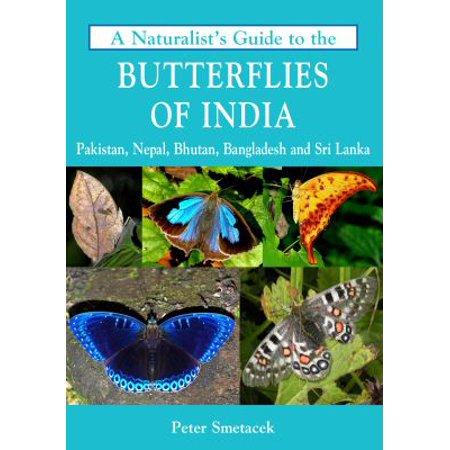 A Naturalists Guide To The Butterflies Of India  Pakistan  Nepal  Bhutan  Bangladesh And Sri Lanka