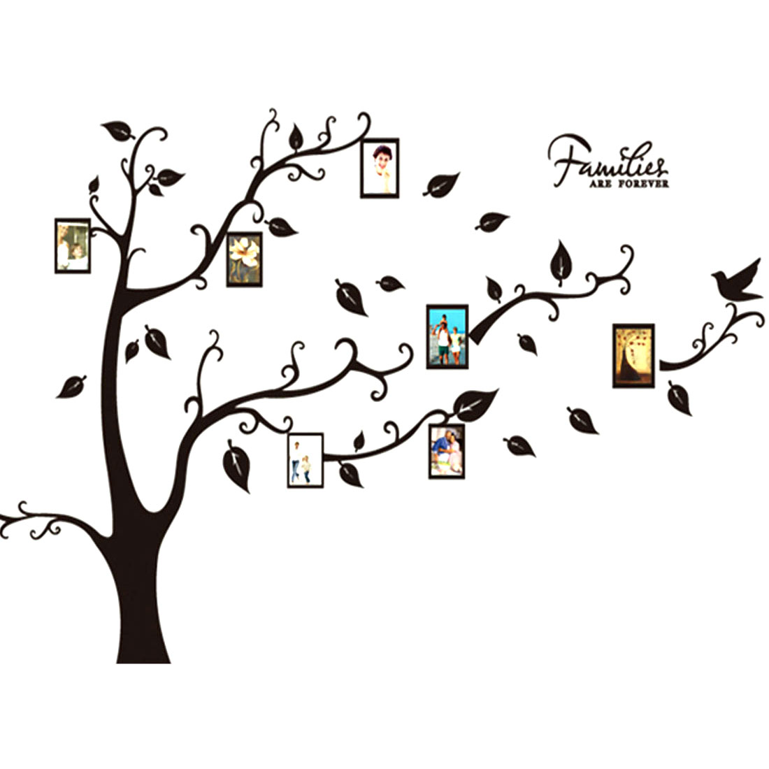 Family Tree Wall Decal Home Living Room Decor Photo Picture Frames