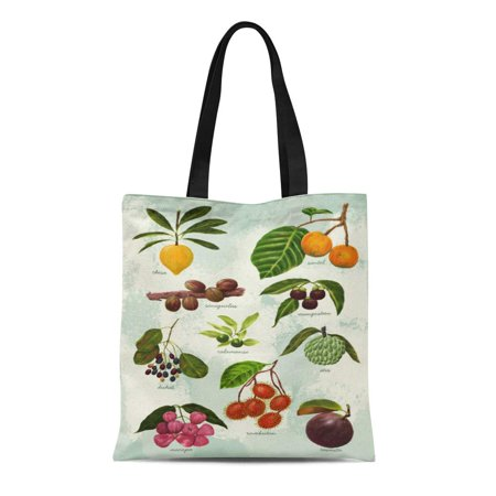 LADDKE Canvas Tote Bag Food Handpainted Filipino Tropical Fruits Pinoy Philippines Botanical Reusable Handbag Shoulder Grocery Shopping Bags ()