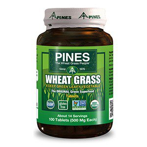 Wheat Grass 500mg Pines 100 Tabs