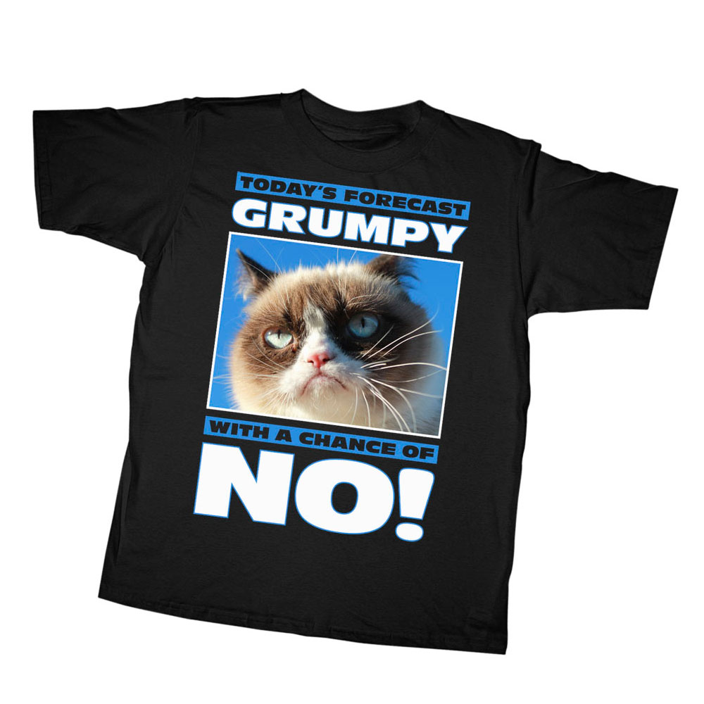 Grumpy Cat Boys' Today's Forecast T-Shirt