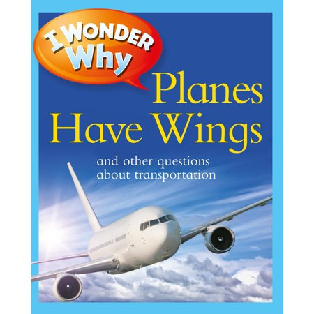I Wonder Why Planes Have Wings : And Other Questions About